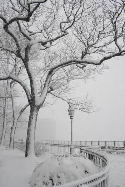 Promenade Photograph - A Nor'easter In Brooklyn by Christopher Kirby