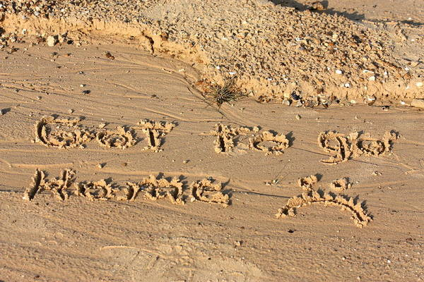 Photograph - A Note In The Sand by Sheila Brown