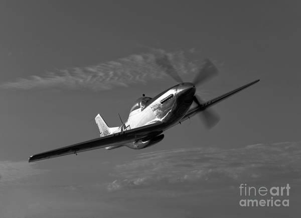 Photograph - A P-51d Mustang In Flight by Scott Germain