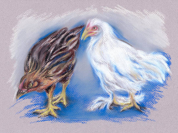 Pastel - A Pair Of Young Pullets by MM Anderson
