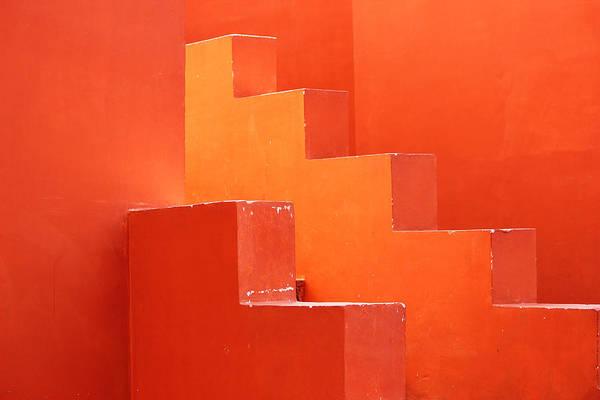 Wall Art - Photograph - A Passionate Relationship  by Prakash Ghai
