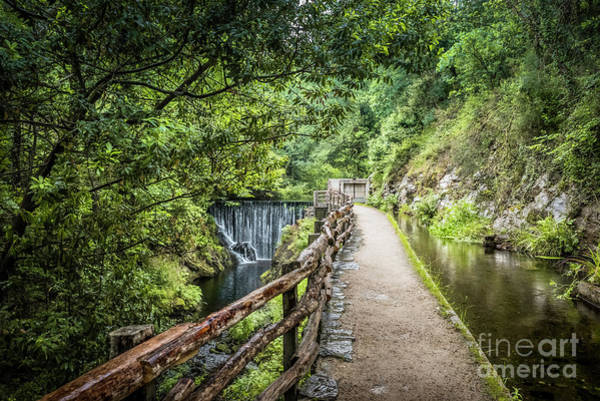 Photograph -  A Path Between Two Waters by RicardMN Photography