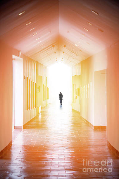 Strolling Photograph - A Path That Never Ends by Evelina Kremsdorf