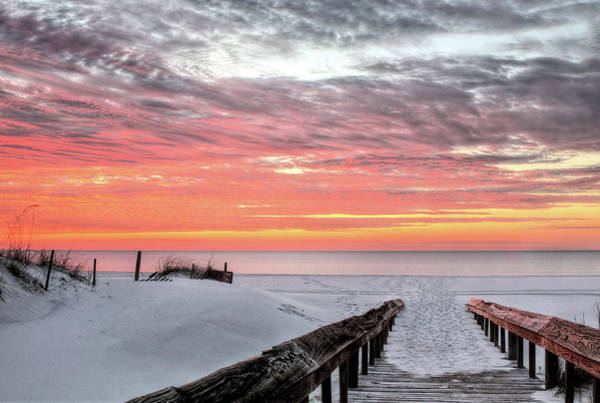 Photograph - A Path To Paradise In Orange Beach by JC Findley