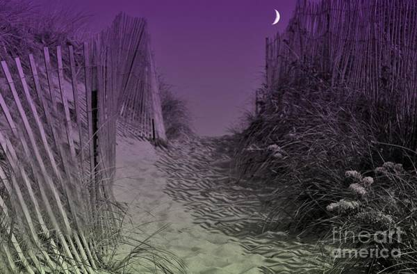 Photograph - A Path To The Atlantic by Barbara S Nickerson