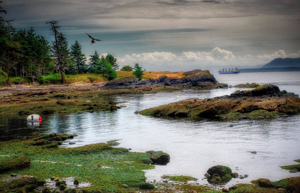 Photograph - A Peaceful Bay by Barry Weiss