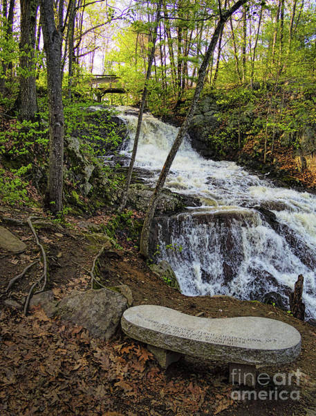 Photograph - A Peaceful Spot In Portland, Maine  -72144 by John Bald