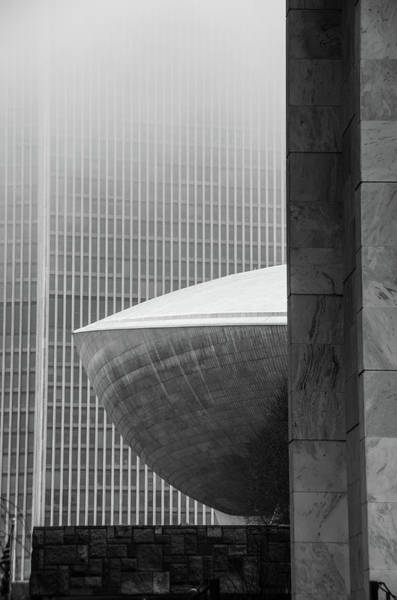 Photograph - A Peek At The Egg by Neil Shapiro