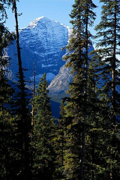Photograph - A Peek At The Peak by Larry Ricker