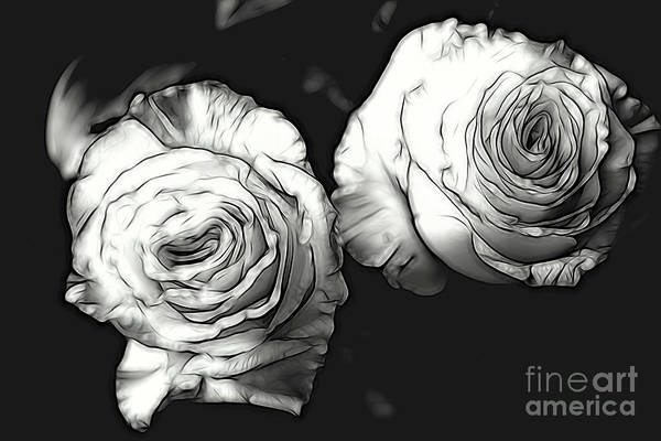A Perfect Pair Bw Art Print