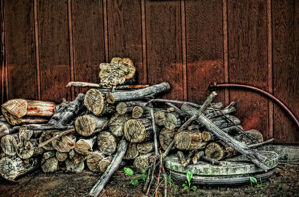 Photograph - A Pile Of Firewood  by Reynaldo Williams