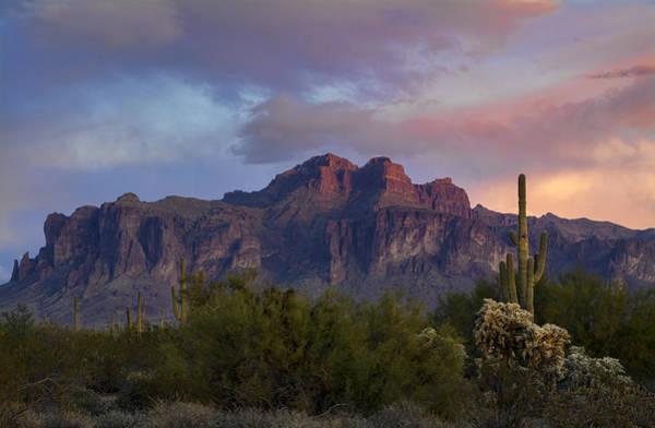 Superstition Mountains Photograph - A Pink Winter Sunset At The Supes  by Saija Lehtonen