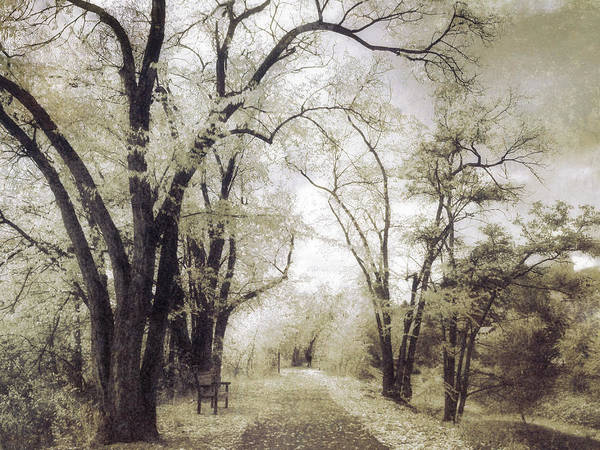 Photograph - A Place For Dreams To Stay Forever by Tara Turner