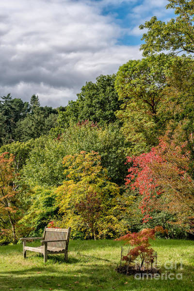 Wall Art - Photograph - A Place To Rest by Adrian Evans