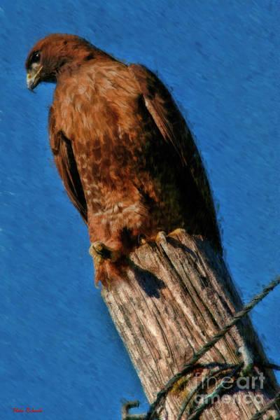 Photograph - A Pole's Eye View by Blake Richards