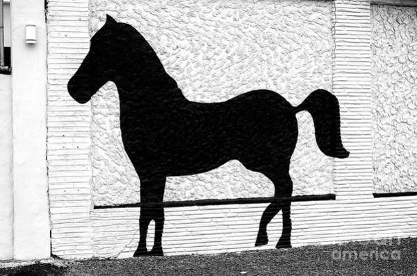Photograph - A Pony Made Of Stone by John Rizzuto
