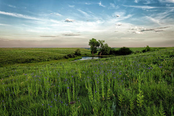 Photograph - A Prairie Pond by Scott Bean