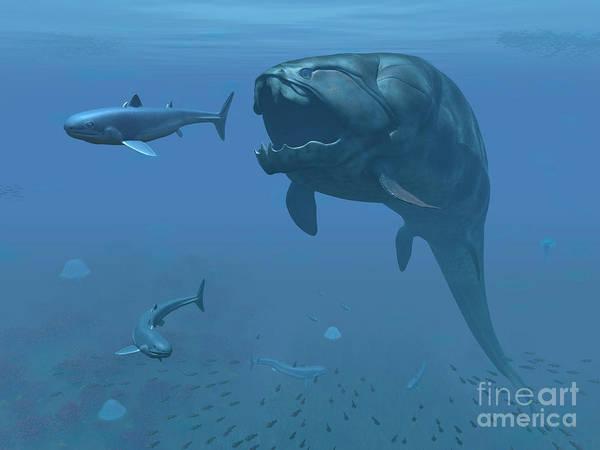 Paleobotany Digital Art - A Prehistoric Dunkleosteus Fish by Walter Myers