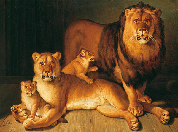 Male Lion Painting - A Pride Of Lions by Jean-Baptiste Huet