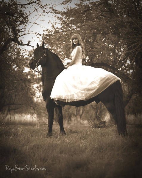 Photograph - A Princess Dream by Carol Whitaker