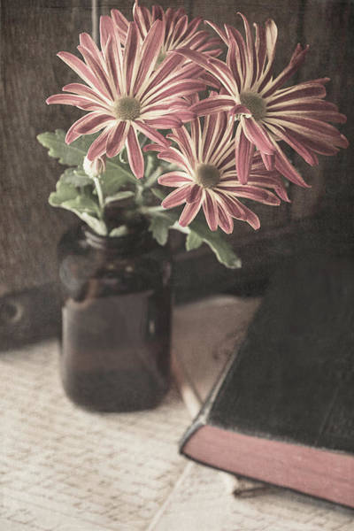 Photograph - A Promise Of Fall by Teresa Wilson