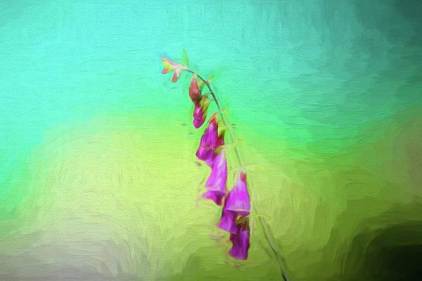Digital Art - A Purple Wildflower. by Rusty R Smith