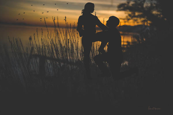 Photograph - A Question At Sunset by Ericamaxine Price