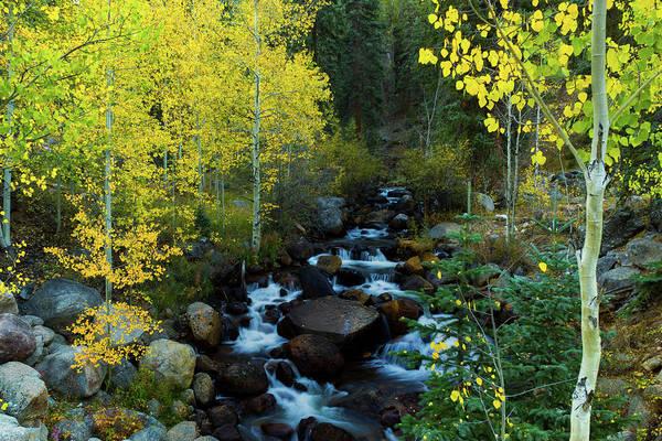 Photograph - A Quiet Place In Autumn by John De Bord