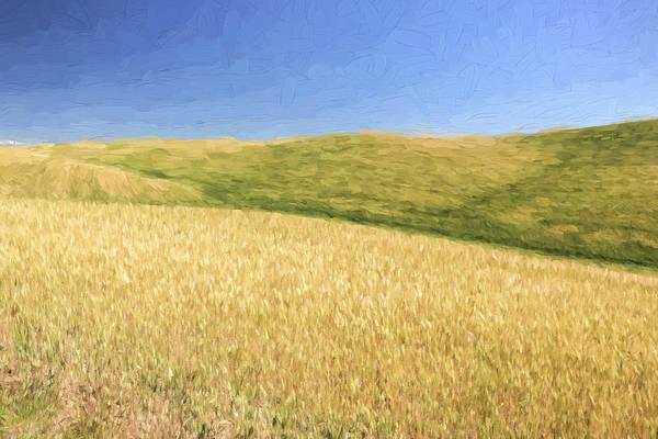 Agriculture Digital Art - A Quiet Walk II by Jon Glaser