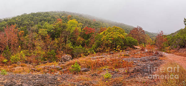 Photograph - A Rainy And Foggy Day At Lost Maples State Natural Area - Texas Hill Country by Silvio Ligutti