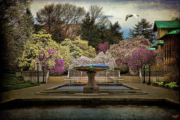 Photograph - A Rainy Day In Magnolia Season by Chris Lord