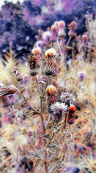 Digital Art - A Rather Thorny Subject by Abbie Shores