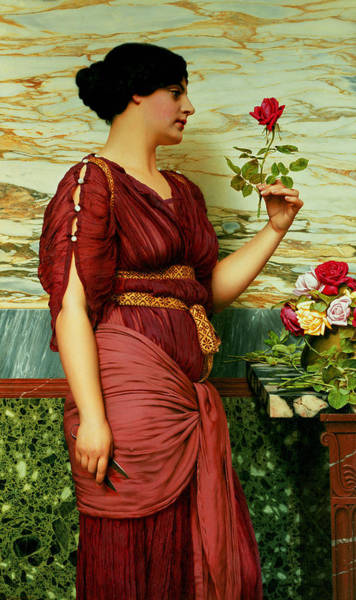 Red Rose Painting - A Red Rose   by John William Godward