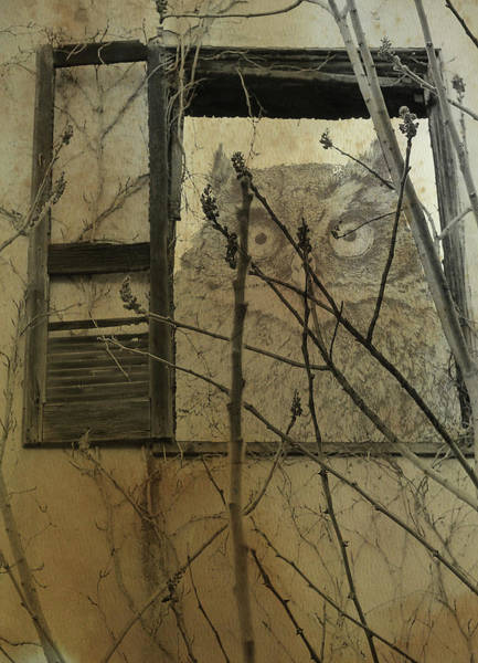 Photograph - A Relic Protecting Ruins I by Char Szabo-Perricelli