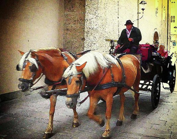 Photograph - A Ride Thru Vienna by Coleman Mattingly