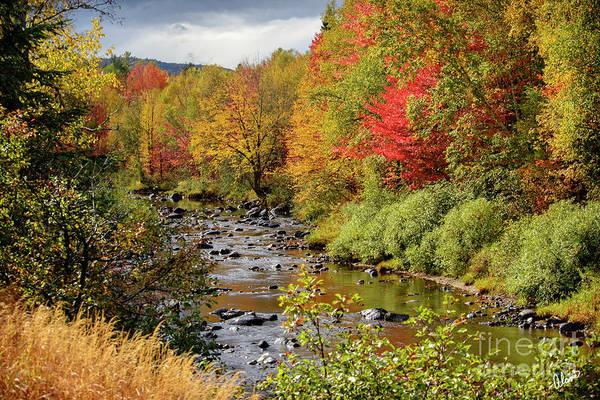 Photograph - A River Runs Through by Alana Ranney