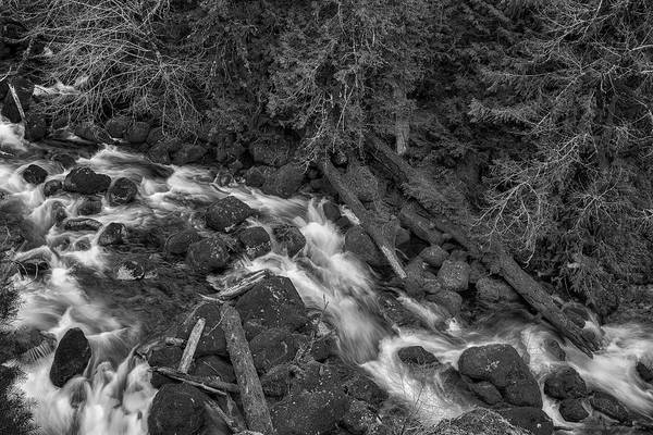 Photograph - A River's Path Bw by Belinda Greb