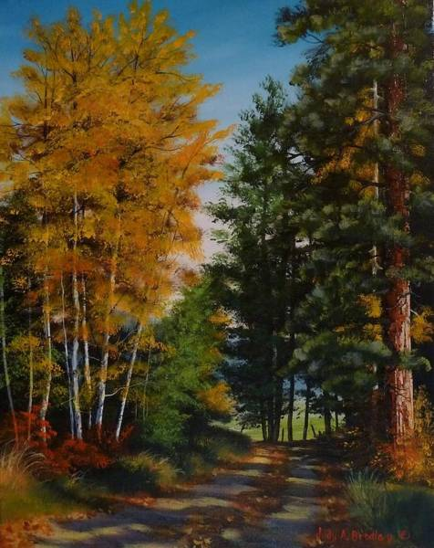 Painting - A Road Less Taken by Judy Bradley