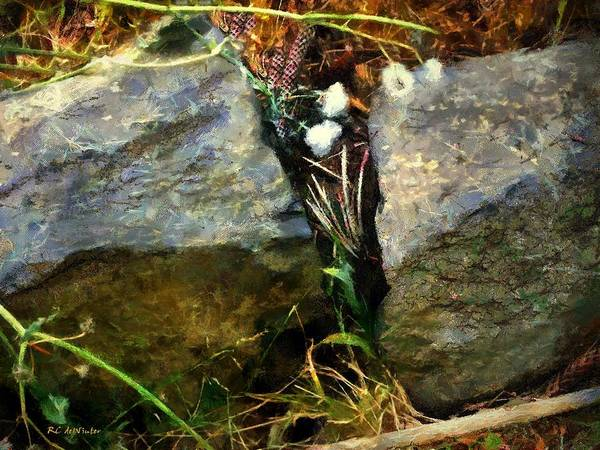 Painting - A Rock And A Hard Place by RC DeWinter