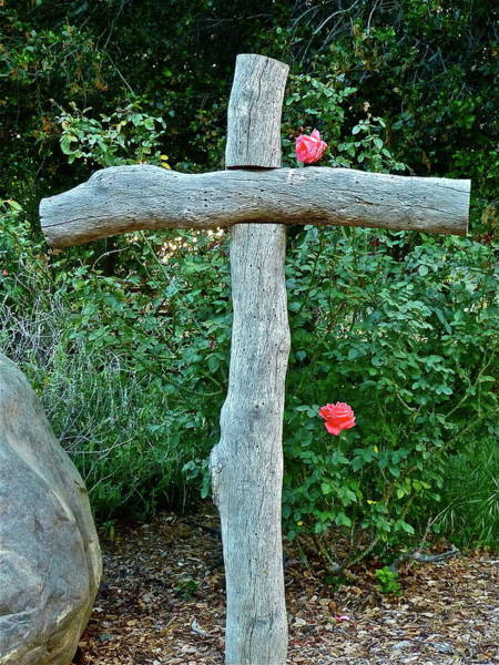 Photograph - A Rose For Jesus by Diana Hatcher
