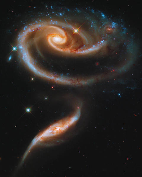 Photograph - A Rose Made Of Galaxies by Paul W Faust - Impressions of Light