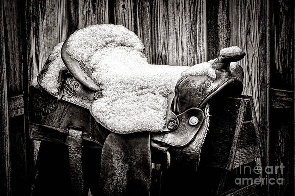 Wall Art - Photograph - A Saddle In Winter by Olivier Le Queinec