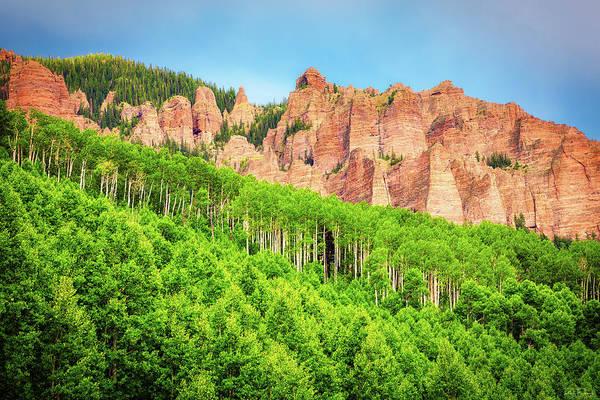 Photograph - A Sea Of Green by Rick Furmanek