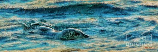 Photograph - A Sea Otter Swim by Blake Richards