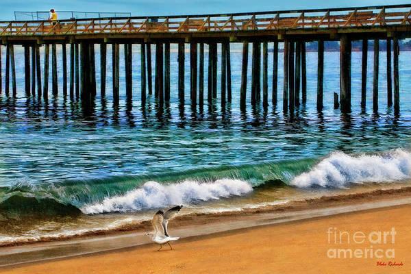 Photograph - A Seagull Run Sea Cliff State Beach by Blake Richards
