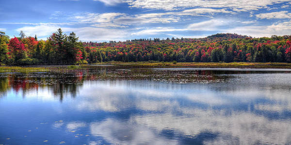 Photograph - A September Autumn View by David Patterson
