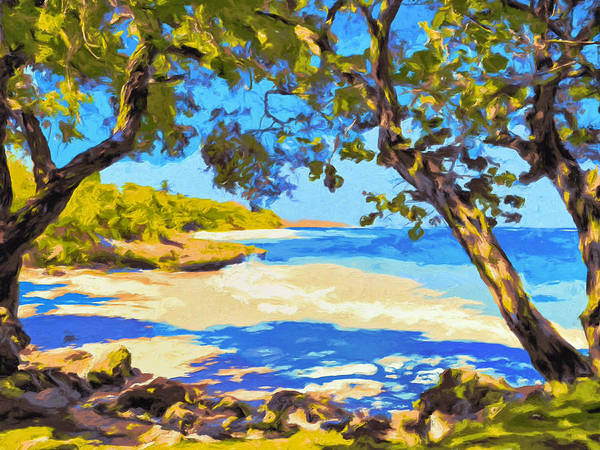Painting - A Shady Kona Cove by Dominic Piperata