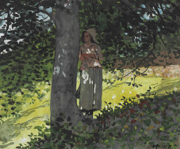 Painting - A Shady Spot Houghton Farm by Winslow Homer