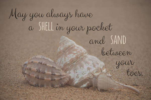Photograph - A Shell In Your Pocket by Teresa Wilson