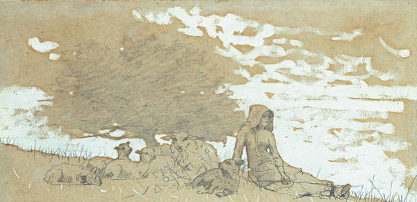 The Shepherdess Wall Art - Painting - A Shepherdess by Winslow Homer